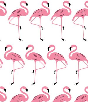 Flamingo-Rosy-Roller-Blind