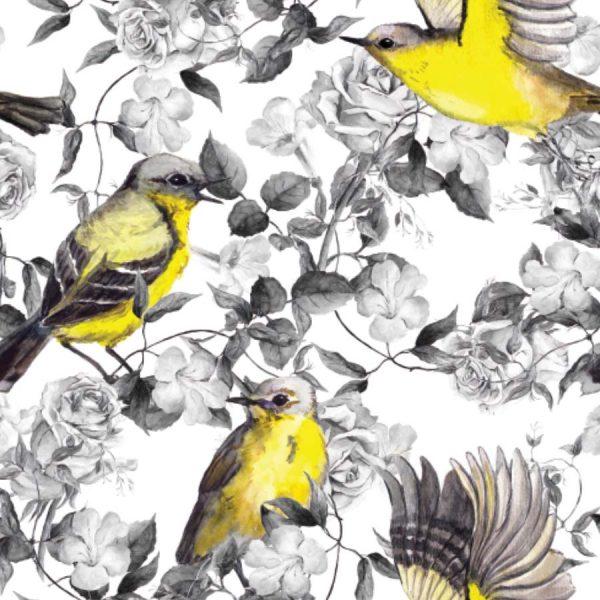 Wild-Sparrow-Roller-Blind