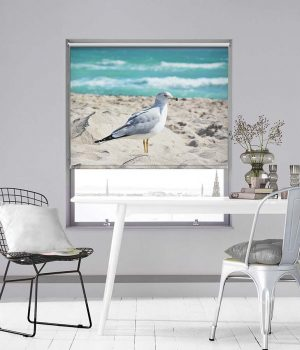Western Gull on Beach Photo Roller Blind