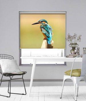 Blue Kingfisher Photo Roller Blind