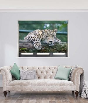 Leopard Roller Blinds