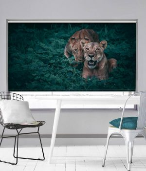 Lion and her Cub Roller Blind