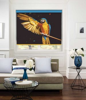 Macaw Roller Blind